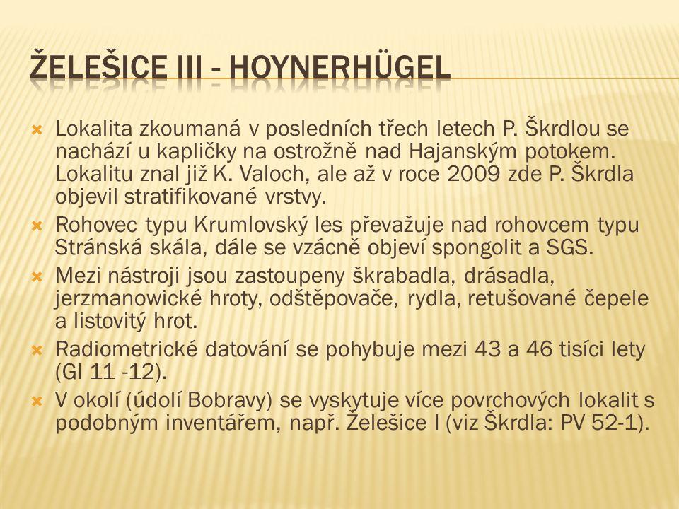 Želešice III - Hoynerhügel