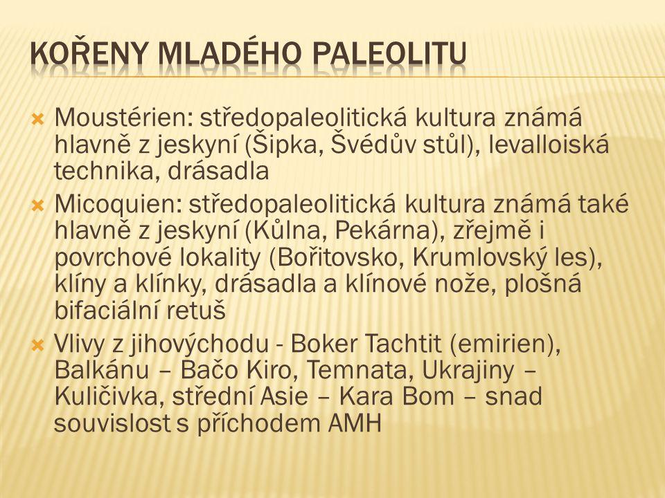 Kořeny mladého paleolitu