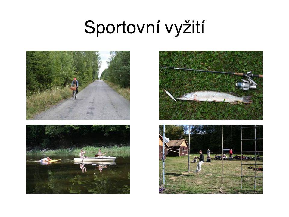 Sportovní vyžití