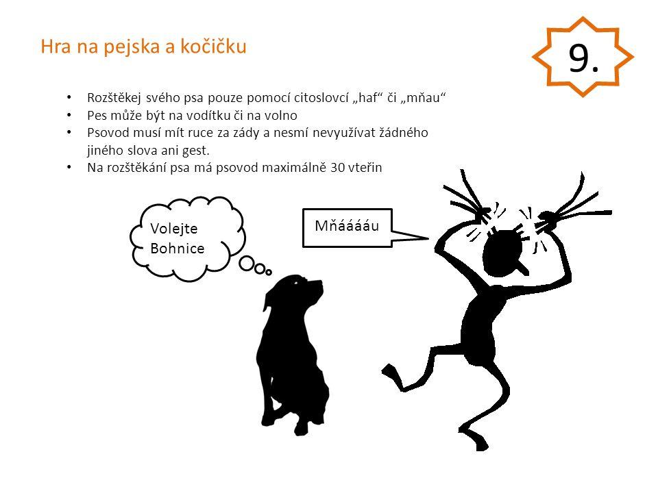 9. Hra na pejska a kočičku Mňááááu Volejte Bohnice