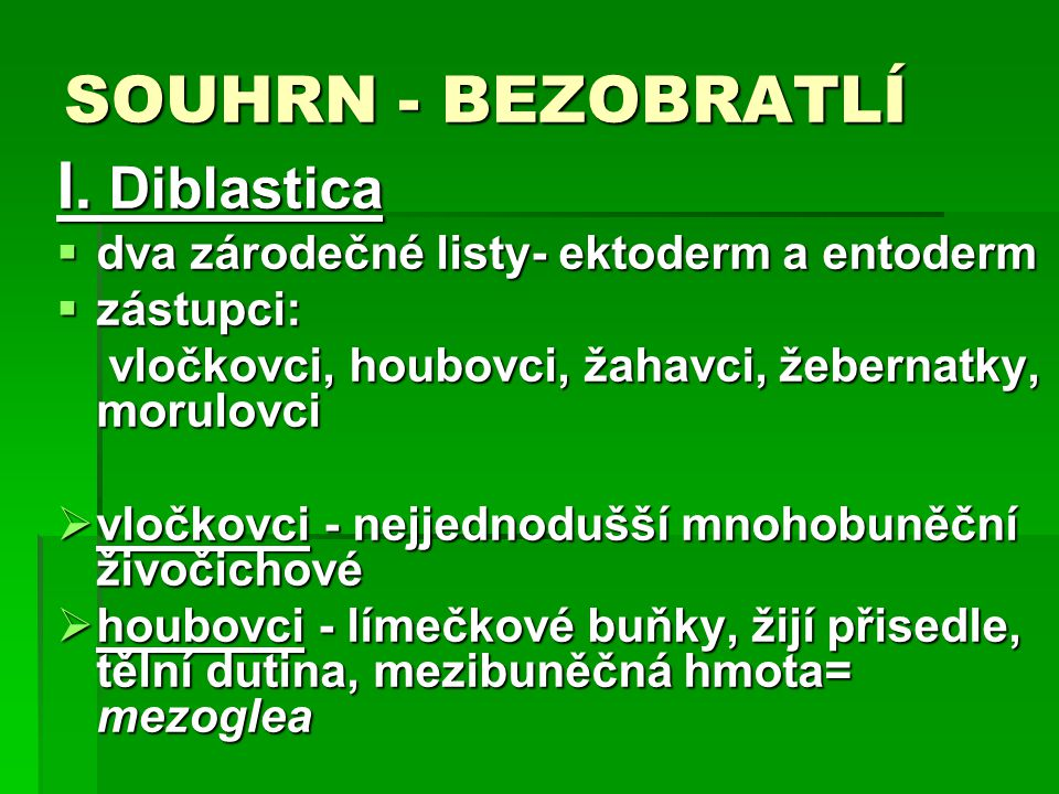 SOUHRN - BEZOBRATLÍ I. Diblastica