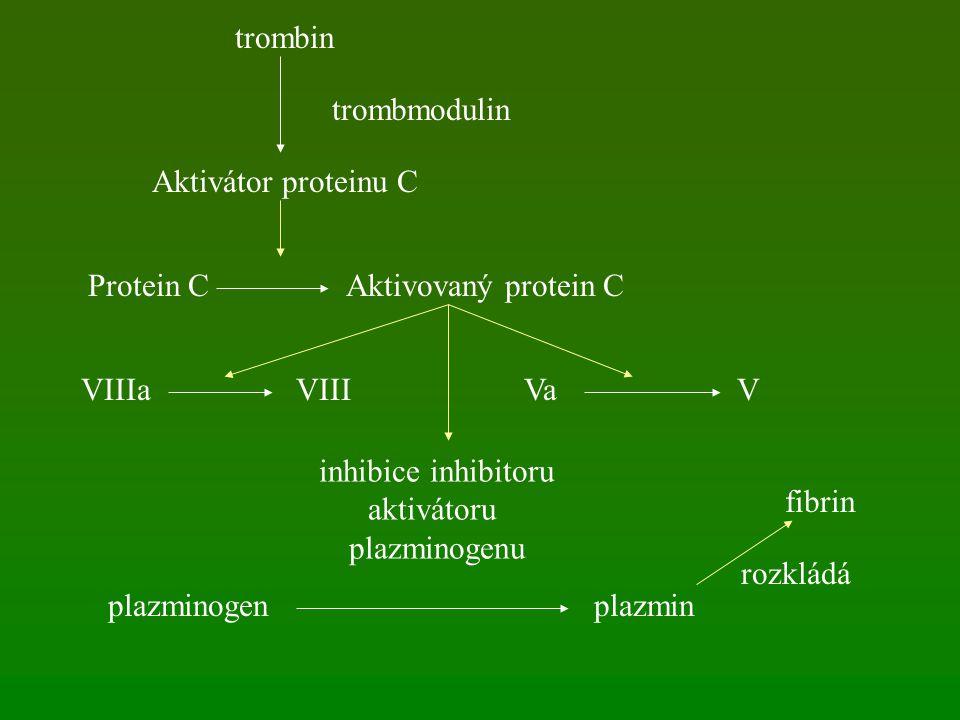 trombin trombmodulin. Aktivátor proteinu C. Protein C. Aktivovaný protein C. VIIIa. VIII. Va.