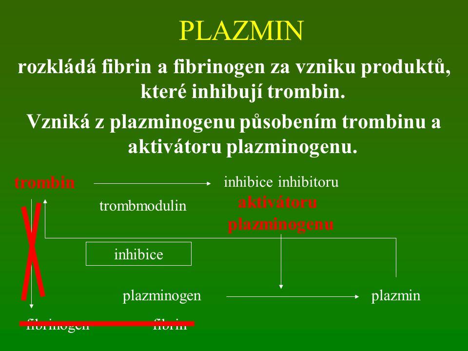 Vzniká z plazminogenu působením trombinu a aktivátoru plazminogenu.