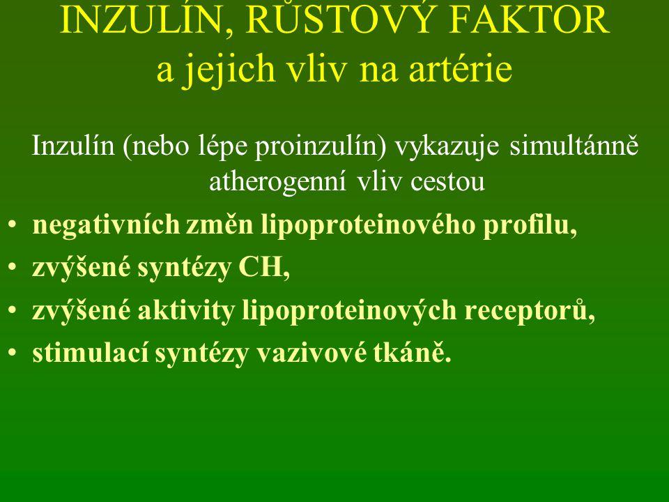 INZULÍN, RŮSTOVÝ FAKTOR a jejich vliv na artérie