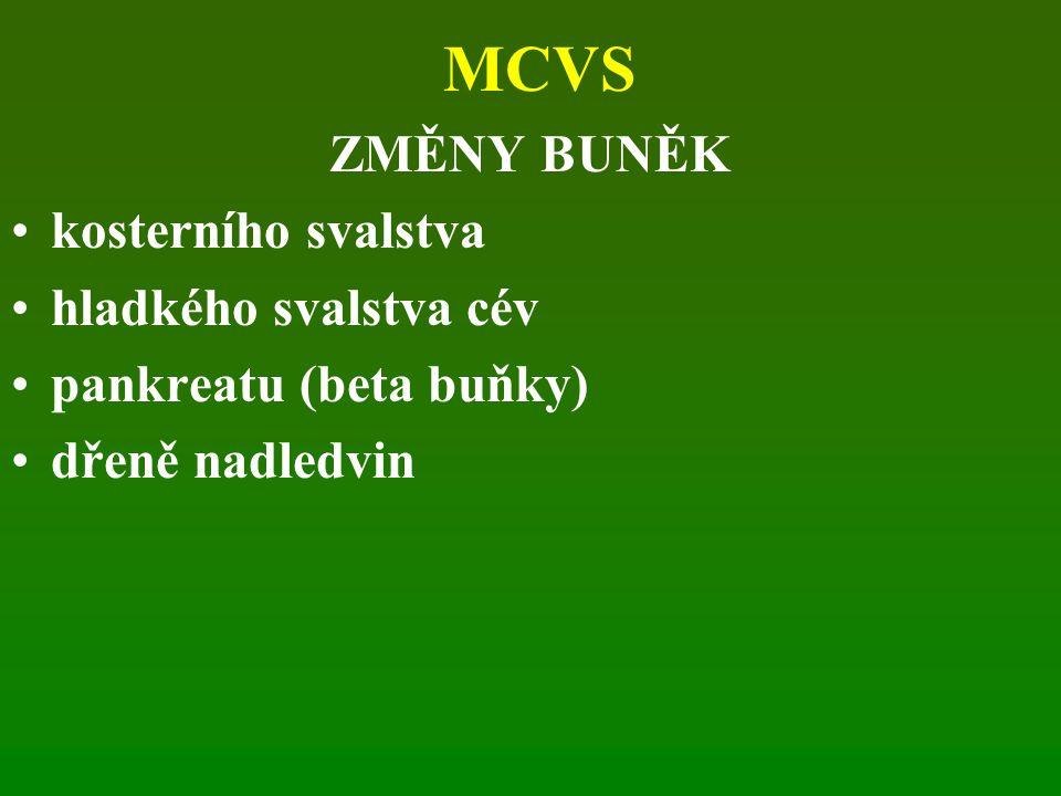 MCVS ZMĚNY BUNĚK kosterního svalstva hladkého svalstva cév