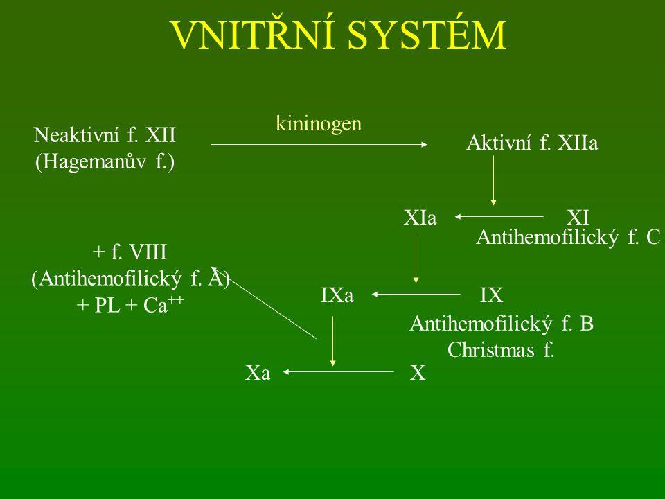 VNITŘNÍ SYSTÉM kininogen Aktivní f. XIIa Neaktivní f. XII