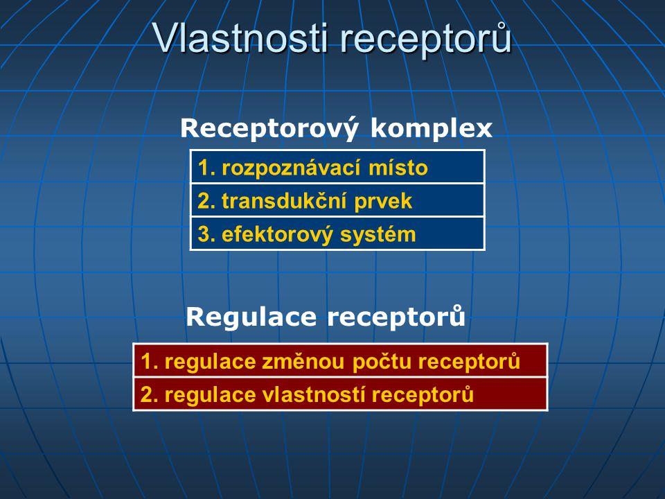 Vlastnosti receptorů Receptorový komplex Regulace receptorů
