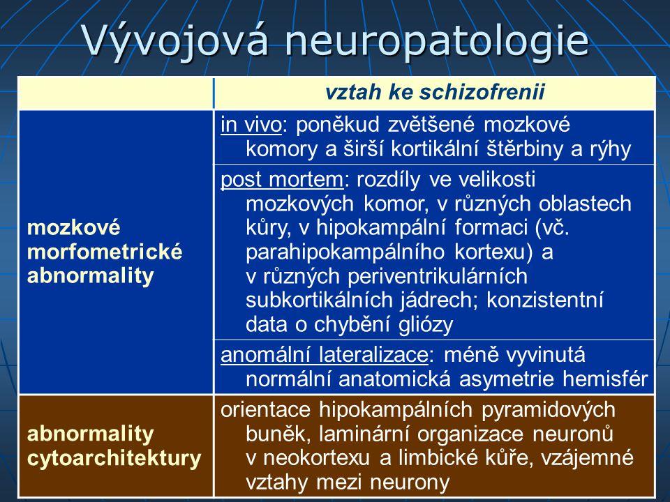 Vývojová neuropatologie