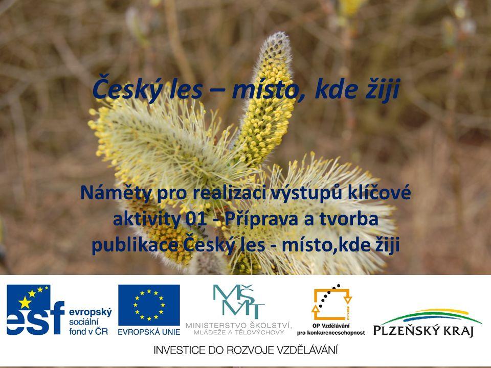 Český les – místo, kde žiji