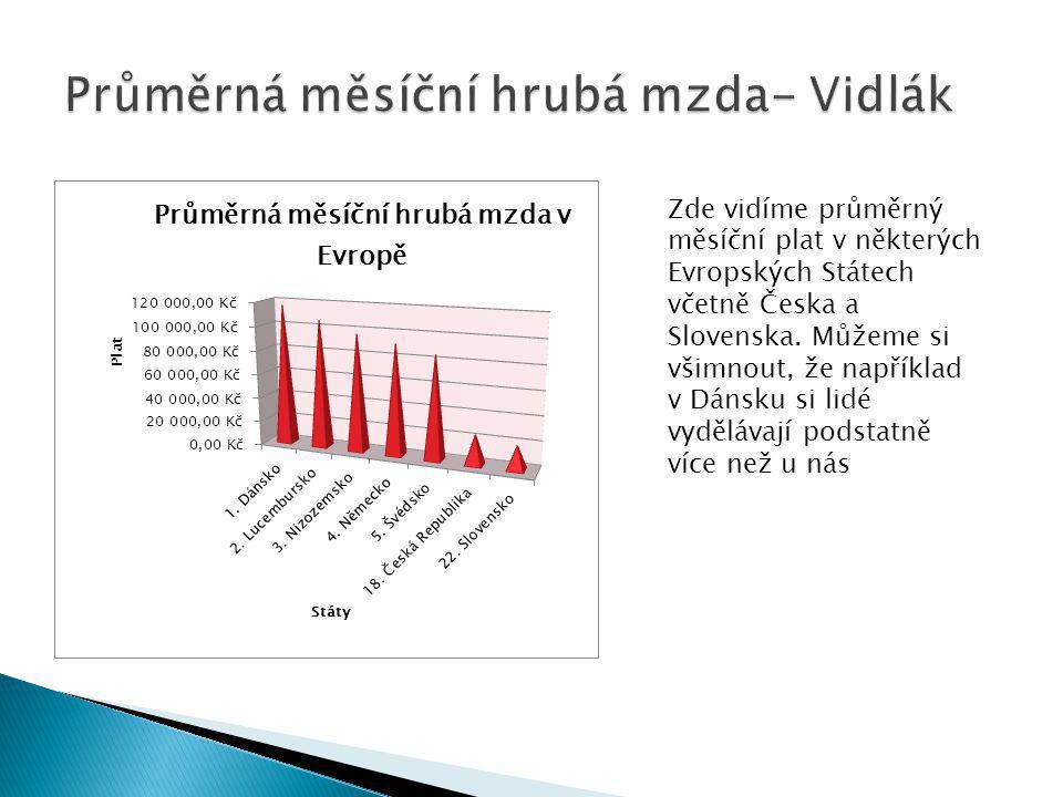 Průměrná měsíční hrubá mzda- Vidlák