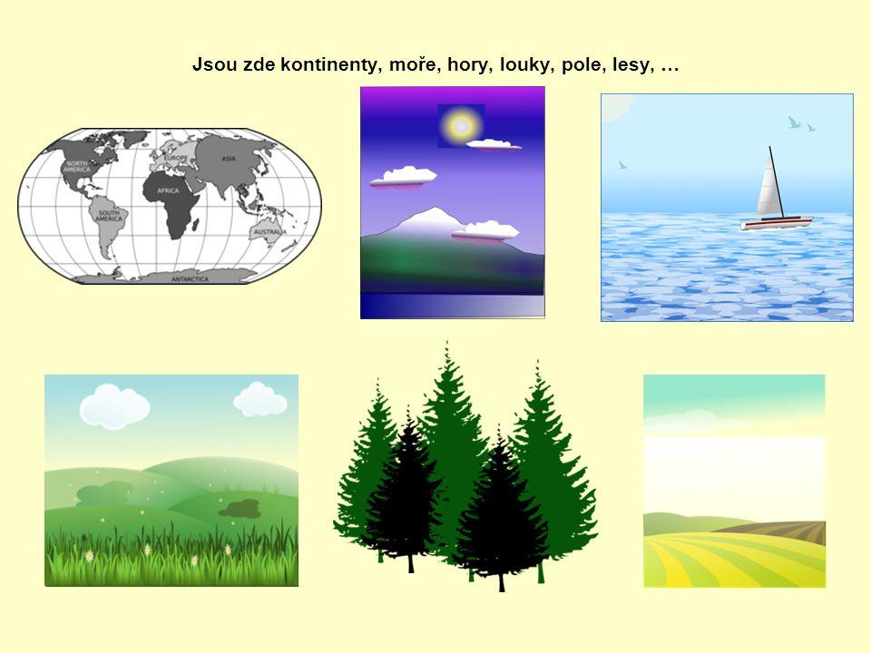 Jsou zde kontinenty, moře, hory, louky, pole, lesy, …
