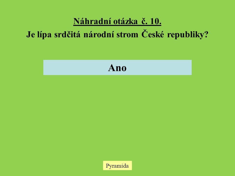 Je lípa srdčitá národní strom České republiky