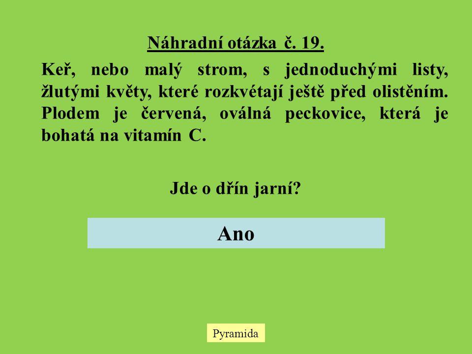 Náhradní otázka č. 19.