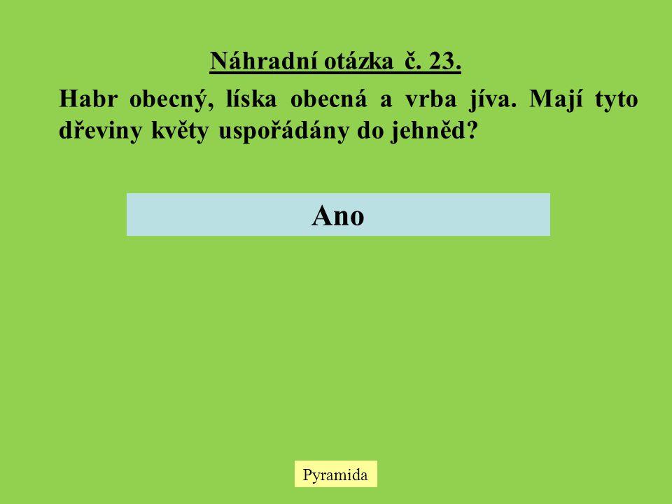 Náhradní otázka č. 23. Habr obecný, líska obecná a vrba jíva. Mají tyto dřeviny květy uspořádány do jehněd