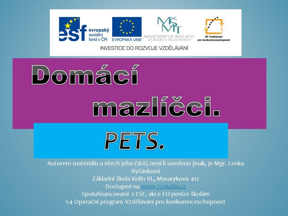 Domácí mazlíčci. PETS. Autorem materiálu a všech jeho částí, není-li uvedeno jinak, je Mgr. Lenka Ryšánková.