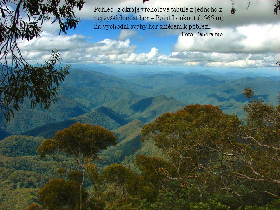 Pohled z okraje vrcholové tabule z jednoho z nejvyšších míst hor – Point Lookout (1565 m) na východní svahy hor směrem k pobřeží.