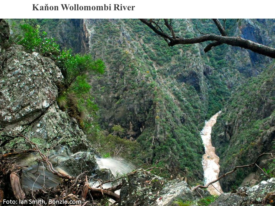 Kaňon Wollomombi River