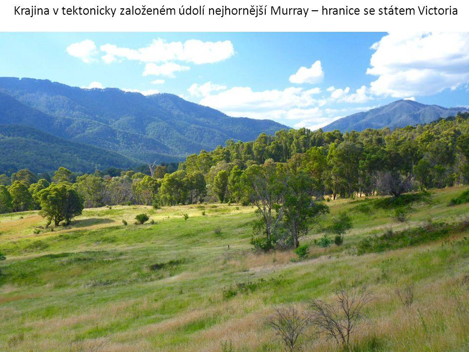 Krajina v tektonicky založeném údolí nejhornější Murray – hranice se státem Victoria