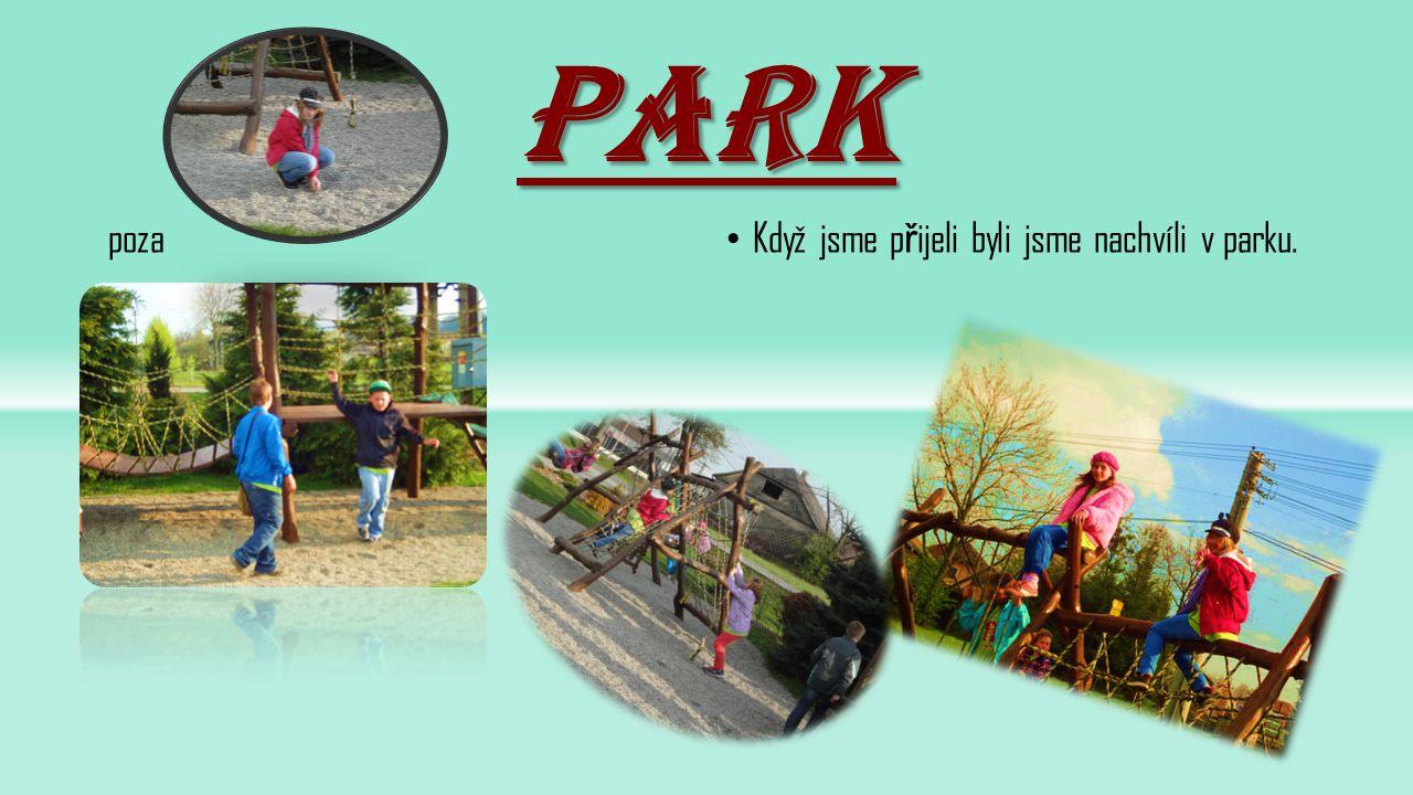 park poza Když jsme přijeli byli jsme nachvíli v parku.