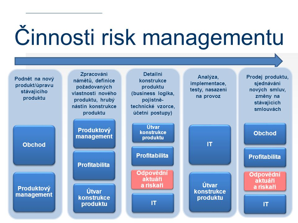 Činnosti risk managementu