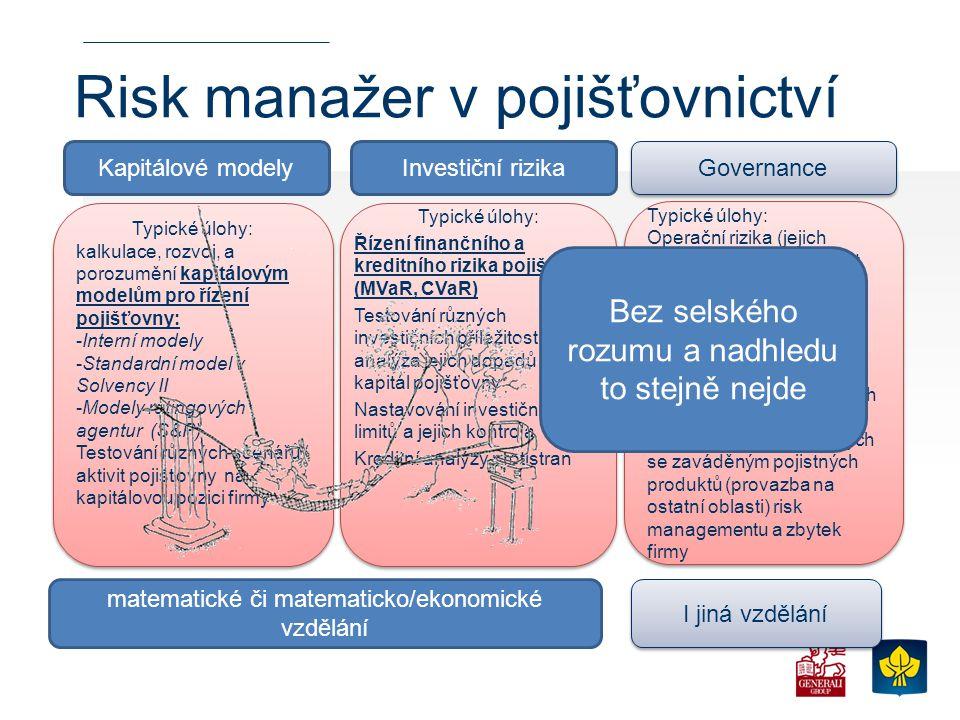 Risk manažer v pojišťovnictví