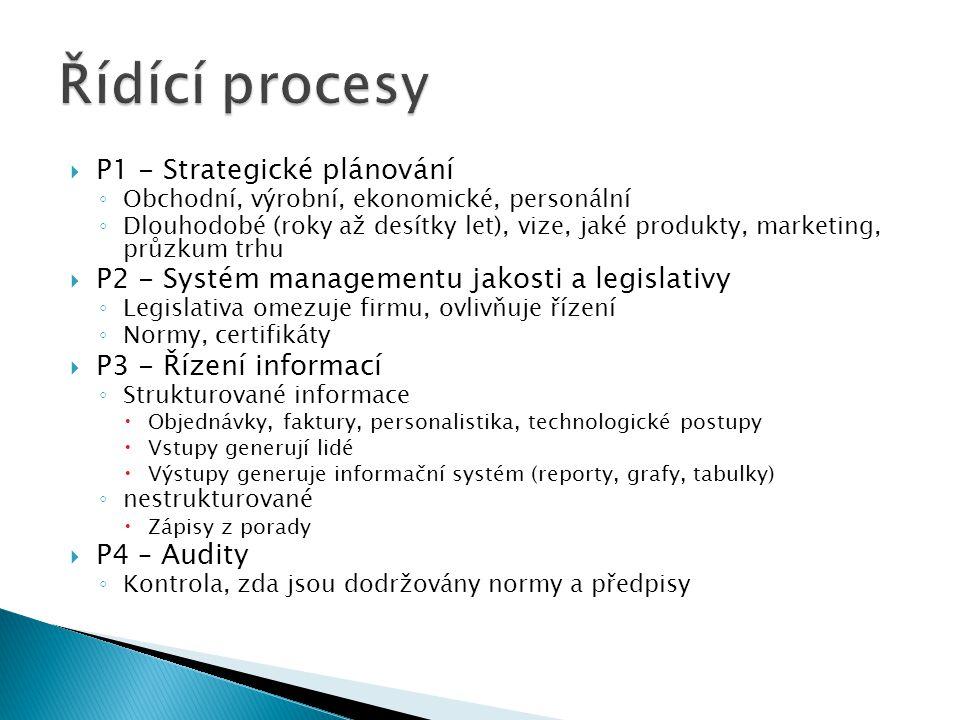 Řídící procesy P1 - Strategické plánování
