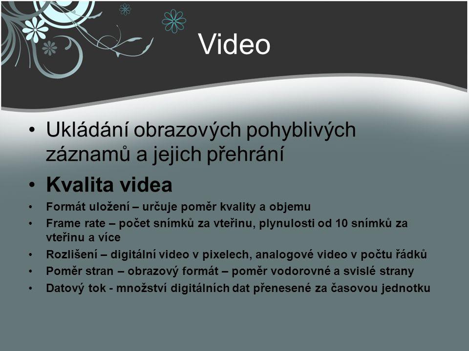 Video Ukládání obrazových pohyblivých záznamů a jejich přehrání
