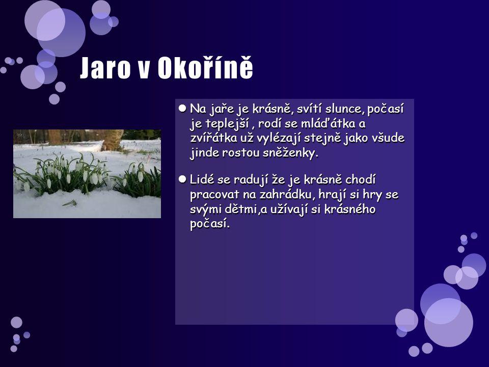 Jaro v Okoříně