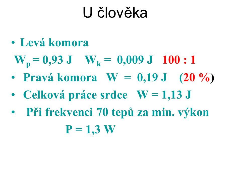 U člověka Levá komora Pravá komora W = 0,19 J (20 %)