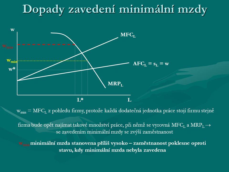 Dopady zavedení minimální mzdy