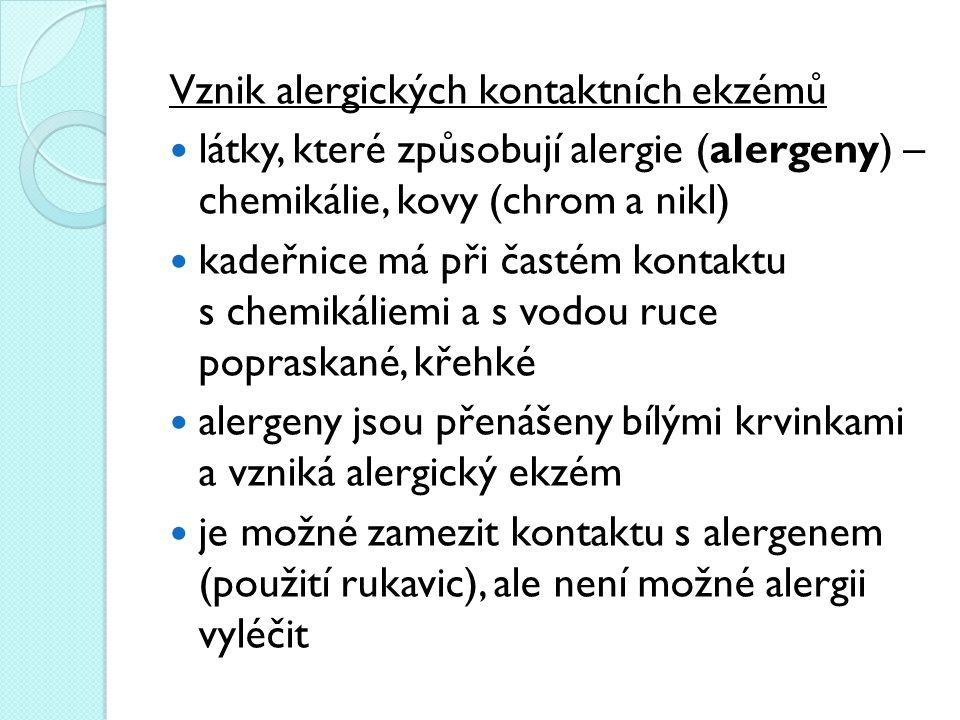 Vznik alergických kontaktních ekzémů