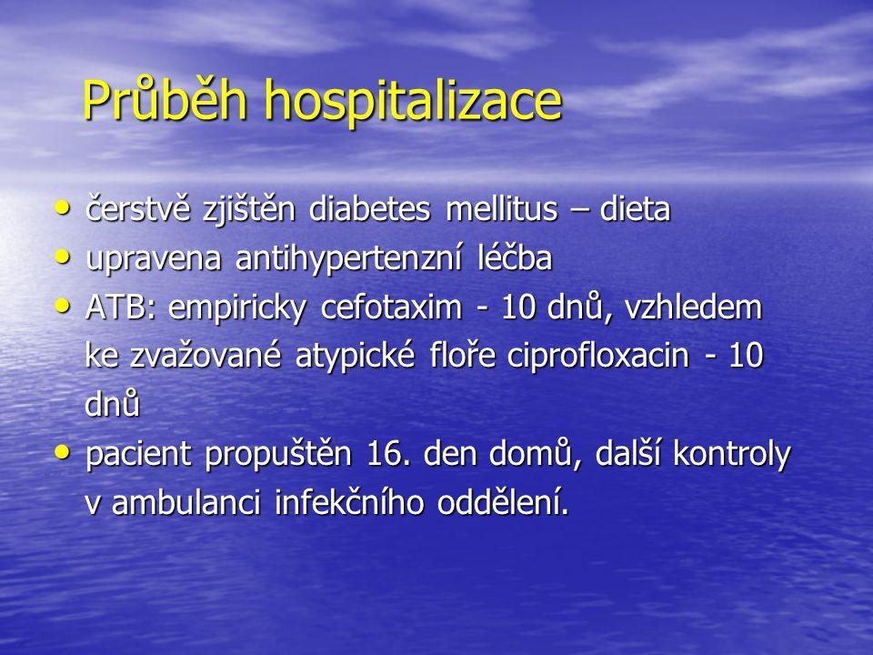 Průběh hospitalizace čerstvě zjištěn diabetes mellitus – dieta