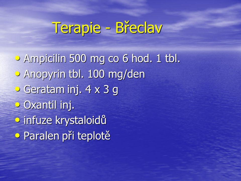 Terapie - Břeclav Ampicilin 500 mg co 6 hod. 1 tbl.