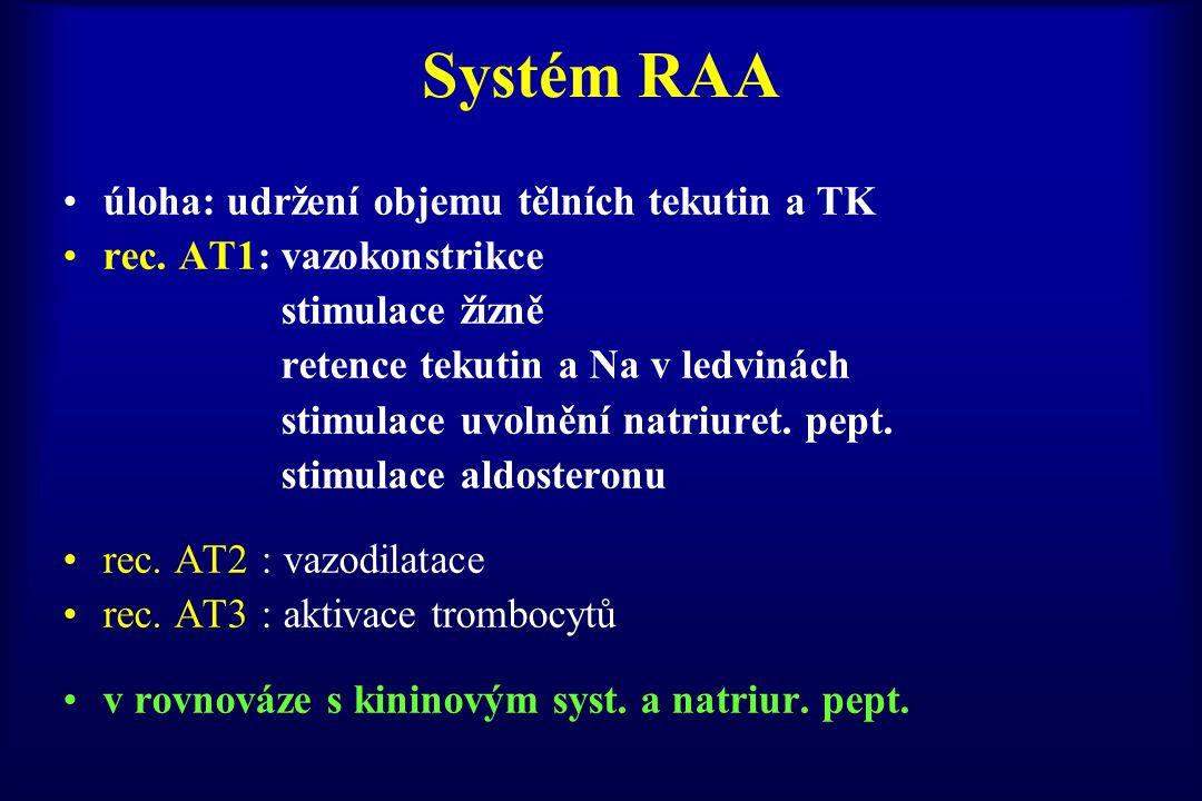 Systém RAA úloha: udržení objemu tělních tekutin a TK