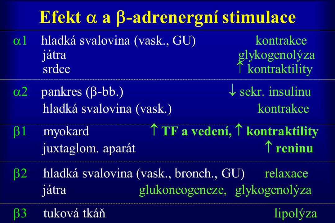 Efekt  a -adrenergní stimulace
