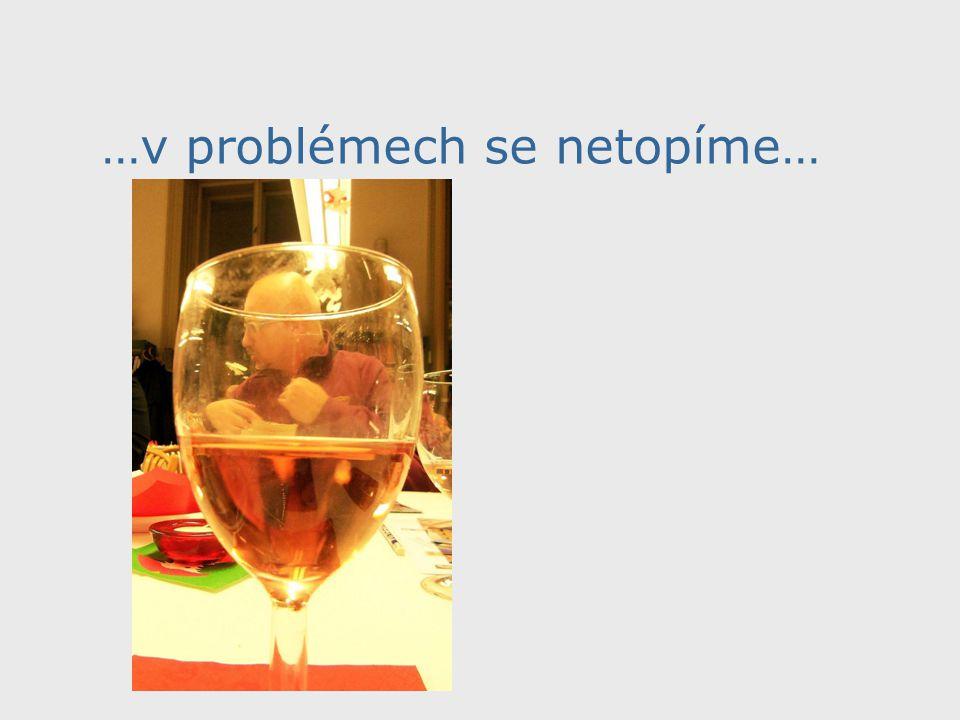 …v problémech se netopíme…