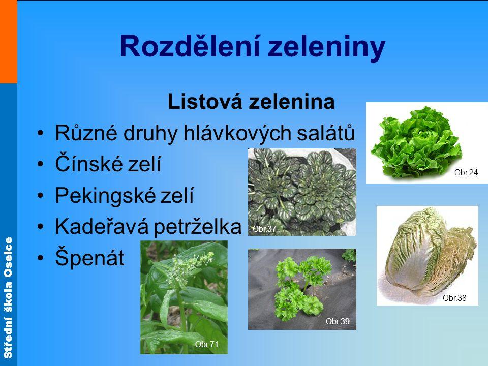 Rozdělení zeleniny Listová zelenina Různé druhy hlávkových salátů