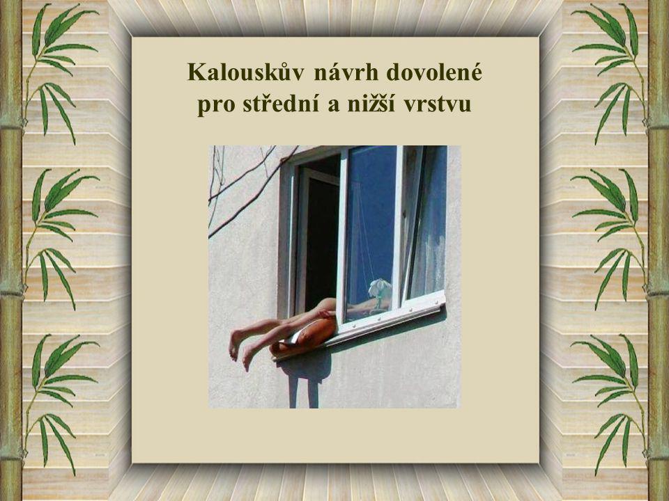 Kalouskův návrh dovolené pro střední a nižší vrstvu