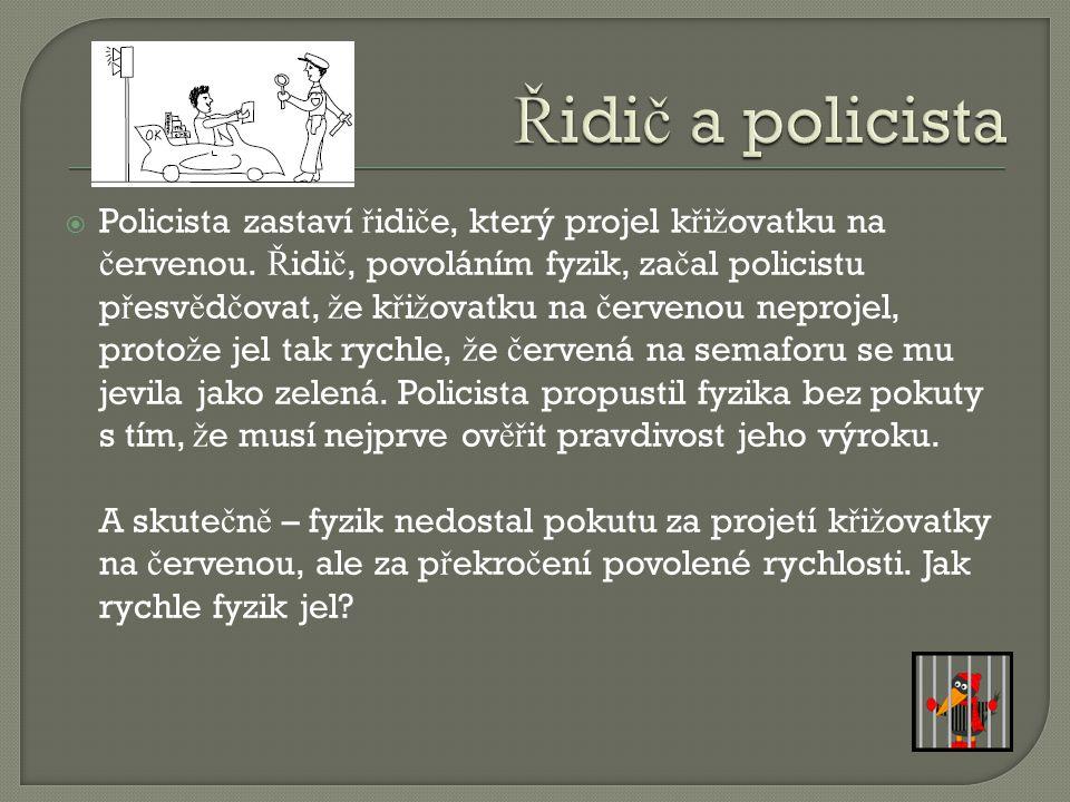 Řidič a policista
