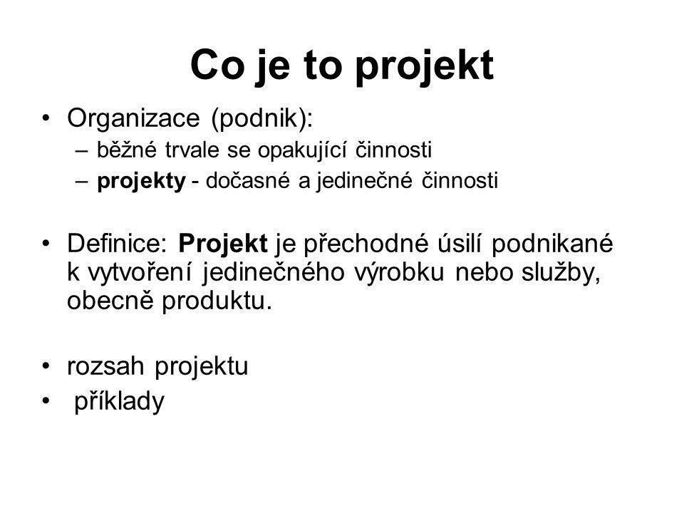 Co je to projekt Organizace (podnik):