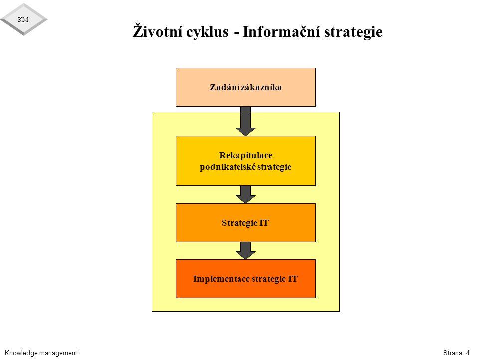 Životní cyklus - Informační strategie
