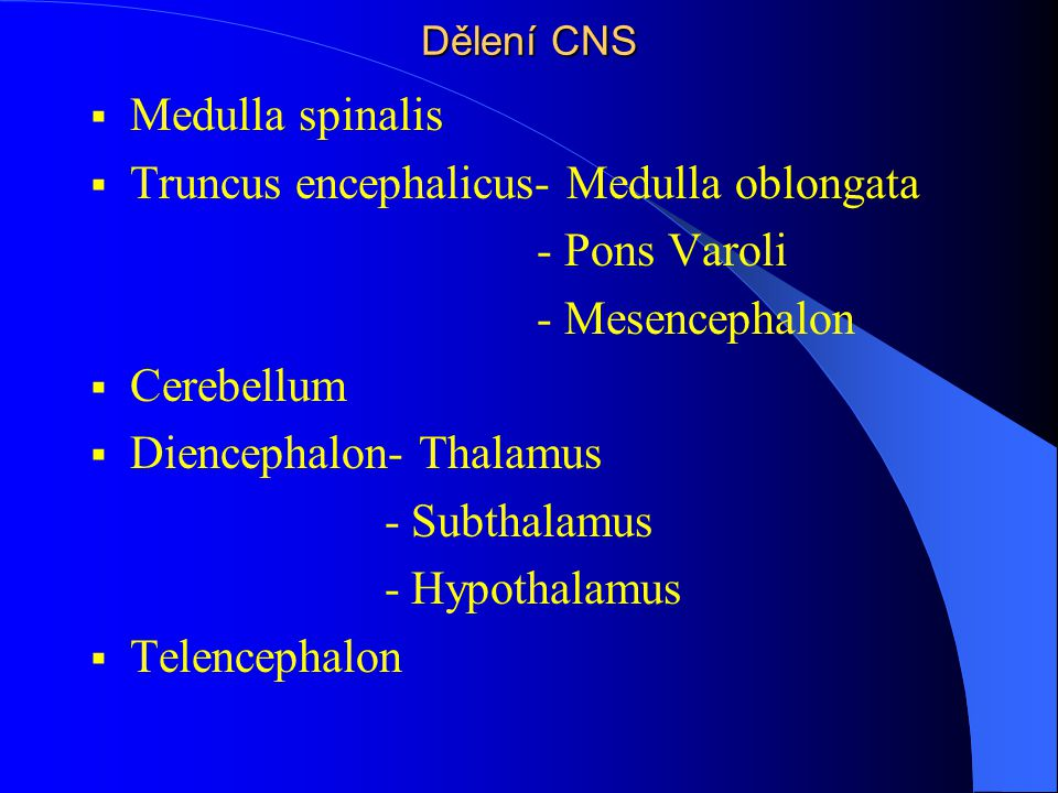 Truncus encephalicus- Medulla oblongata - Pons Varoli - Mesencephalon