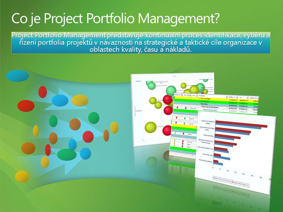 Co je Project Portfolio Management