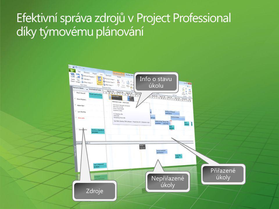 Efektivní správa zdrojů v Project Professional díky týmovému plánování