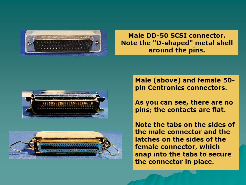 Male DD-50 SCSI connector.