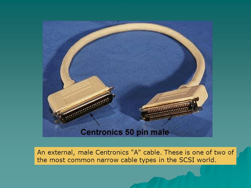 An external, male Centronics A cable