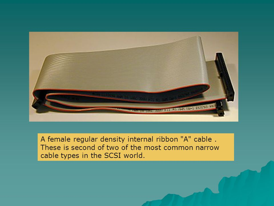 A female regular density internal ribbon A cable