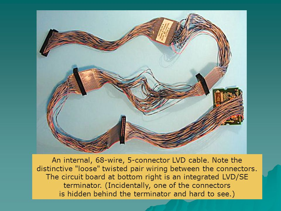 An internal, 68-wire, 5-connector LVD cable. Note the