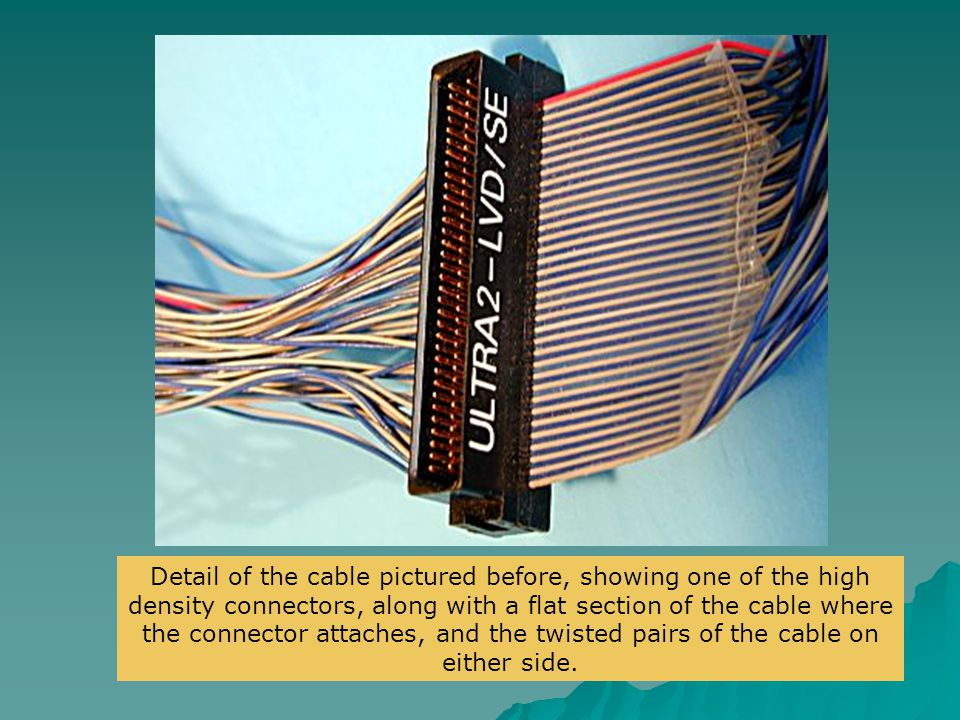 Detail of the cable pictured before, showing one of the high density connectors, along with a flat section of the cable where the connector attaches, and the twisted pairs of the cable on either side.