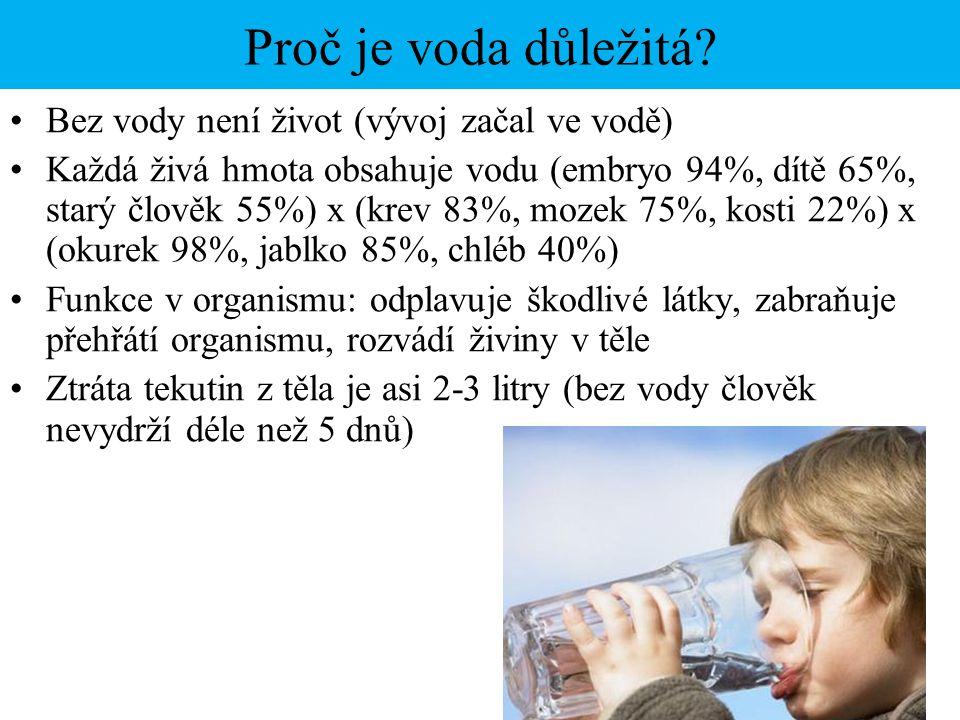 Proč je voda důležitá Bez vody není život (vývoj začal ve vodě)
